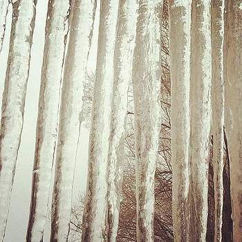 Just A Few Icicles Out There by Cheryl Fallon