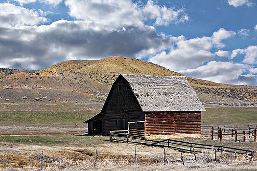 Just An Old Barn by Christy Patino