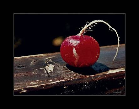 Just radish by Marija Djedovic