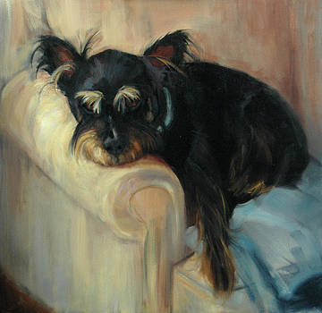 Just Resting by Pet Whimsy  Portraits