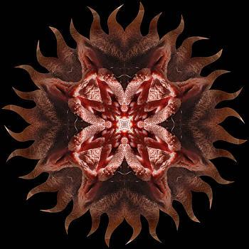 Chris Maher - K0150b Sexual Mandala for Erotic Spirituality