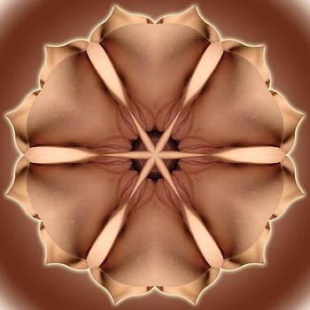 Chris Maher - K1177 Sexual Mandala for Erotic Spirituality