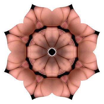 Chris Maher - K3930 Sexual Mandala for Erotic Spirituality