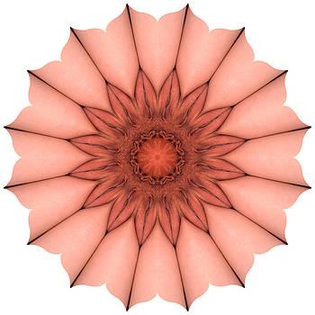 Chris Maher - K4655 Sexual Mandala for Erotic Spirituality
