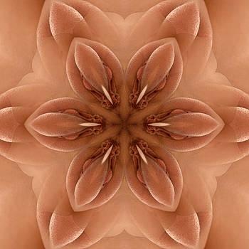 Chris Maher - K7701c Sexual Mandala for Erotic Spirituality