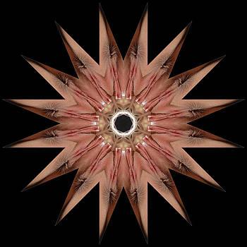 Chris Maher - K8985b Sexual Mandala for Erotic Spirituality