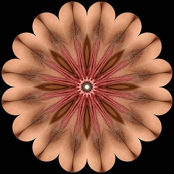 Chris Maher - K9327b Sexual Mandala for Erotic Spirituality