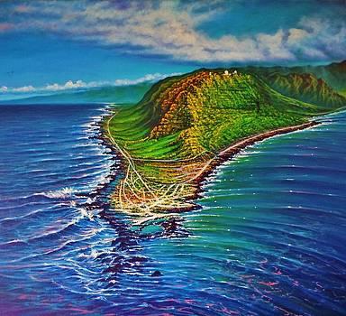 Kaena Point - aerial by Joseph   Ruff