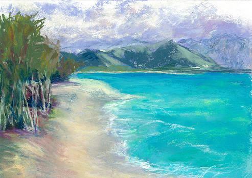 Kailua Beach Park by Jennifer Robin