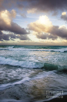 Charmian Vistaunet - Kailua Beach Shore