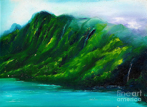 Kailua Hawaii by Donna Chaasadah