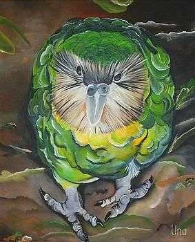 Kakapo by Una  Miller