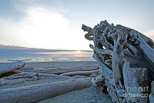 Kalaloch beach by Russell Christie
