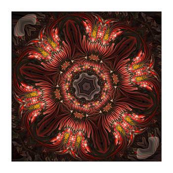 Kaleido 6 Flower Pots by Ck Gandhi