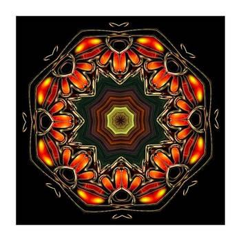 Kaleido Design by Ck Gandhi