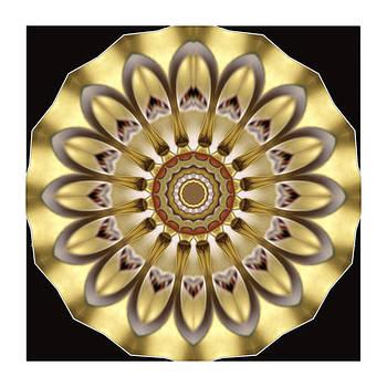 Kaleido golden Flower by Ck Gandhi