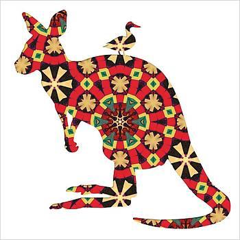 Kaleido Kangaroo by Amy G Taylor