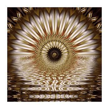 Kaleido Reflection by Ck Gandhi