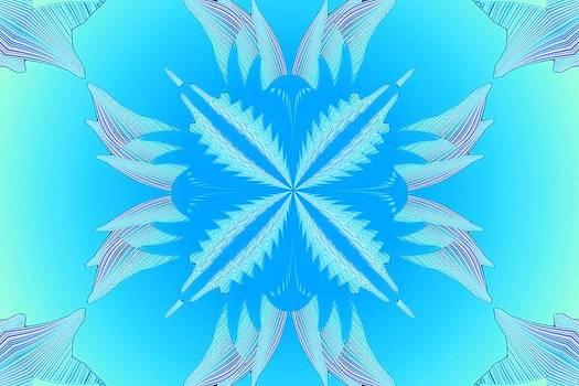 Mike Breau - Kaleidoscope 19