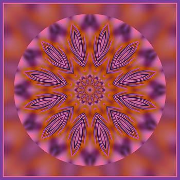 Kaleidoscope Pizzazz by Liz Mackney