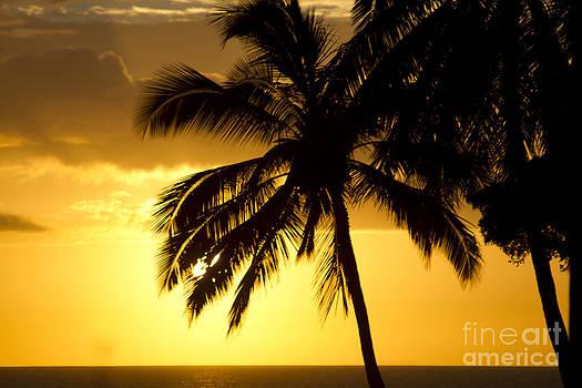 Kamaole Sunset Kihei Maui Hawaii by Sharon Mau