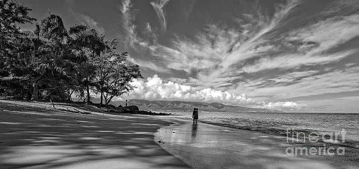 Edward Fielding - Kanaha Beach Maui Hawaii Panoramic
