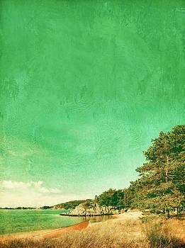 Kanelstrand Beach by Sonya Kanelstrand