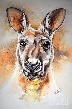 Kangaroo Big Red by Sandra Phryce-Jones