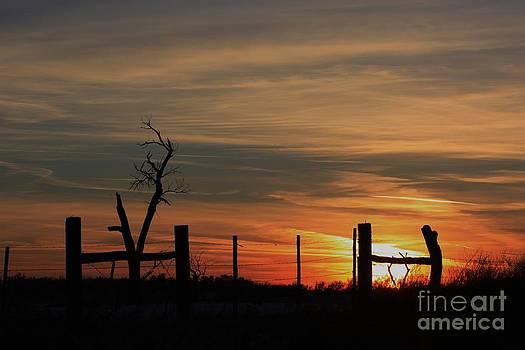 Kansas OrangeWinter Sunset by Robert D  Brozek
