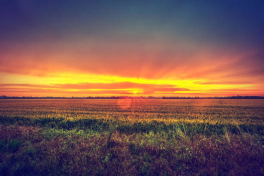 Kansas Sunrise by  Caleb McGinn