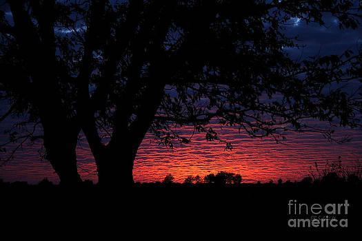 Kansas Sunset by E B Schmidt