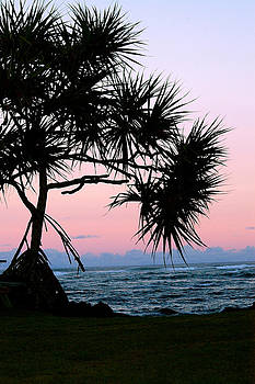 Kapoho Hala Sunrise by Lehua Pekelo-Stearns