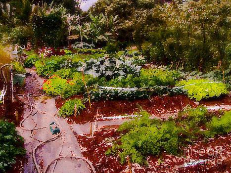 Charles Davis - Karens Kauai garden