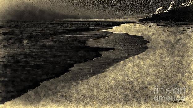 Charles Davis - Kauai Eastside Eve Seashore