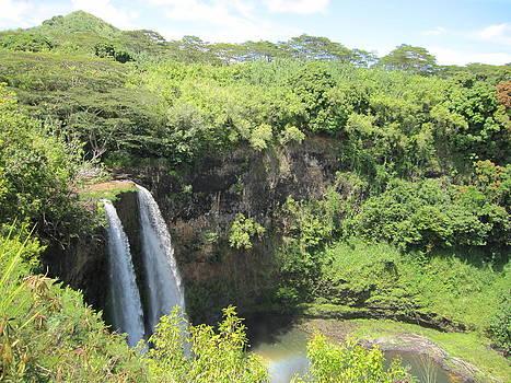 Kauai Falls by Liher Huang