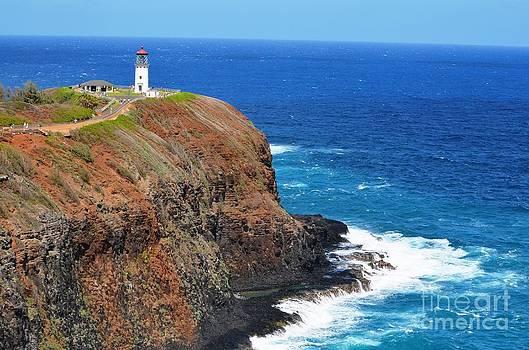 Kauai Lighthouse by Greg Cross