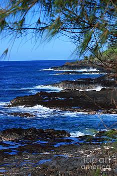 Kauai Shores by Kathy DesJardins