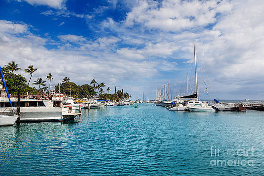 Jo Ann Snover - Kayak dwarfed by larger boats in Lahaina Maui