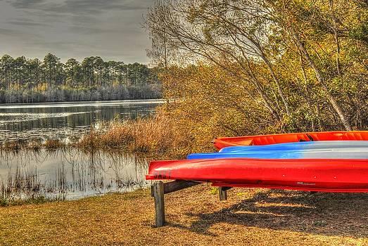Kayaks 003 by Donald Williams