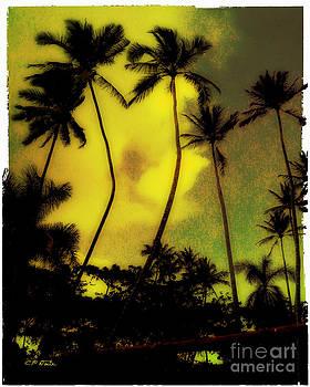 Charles Davis - Kealia Palms