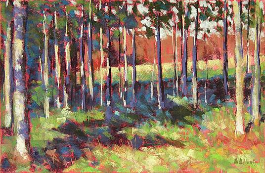 Kelly's Trees by Mary McInnis