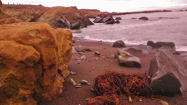 Kelp I need Somebody by Sharon Costa