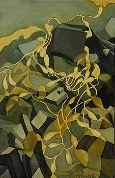 Kelp-on-the-Rocks by Anne Havard