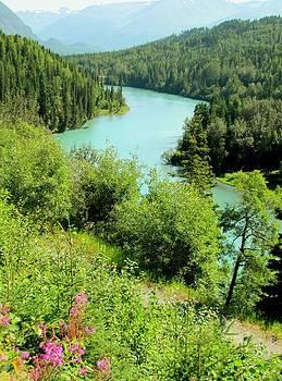 Lisa Dunn - Kenai River