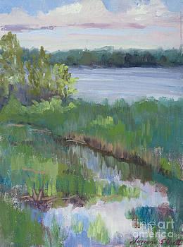 Kennebec Marsh Maine by Suzanne Elliott