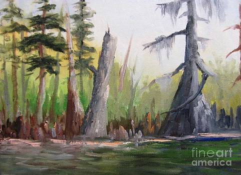 Kenny's Cypress Again by Barbara Haviland