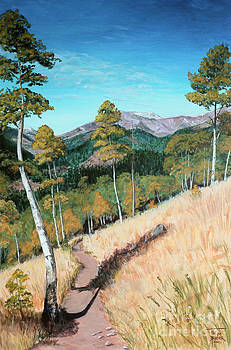 Art By - Ti   Tolpo Bader - Kenosha Pass - Colrado Trail
