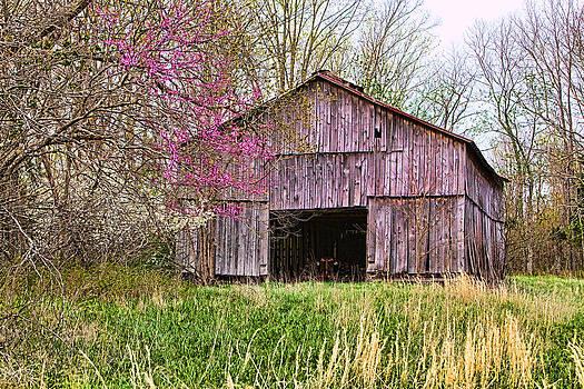 Kentucky Tobacco Barn in Spring by Gene Linzy