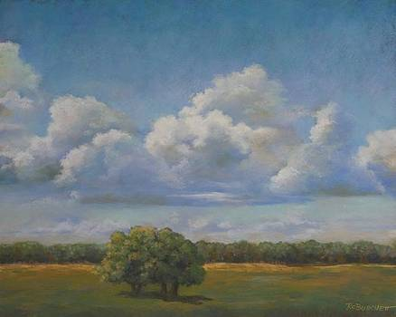 Kerrville Clouds by Regina Calton Burchett