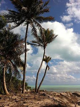Key Largo by Alyson Innes